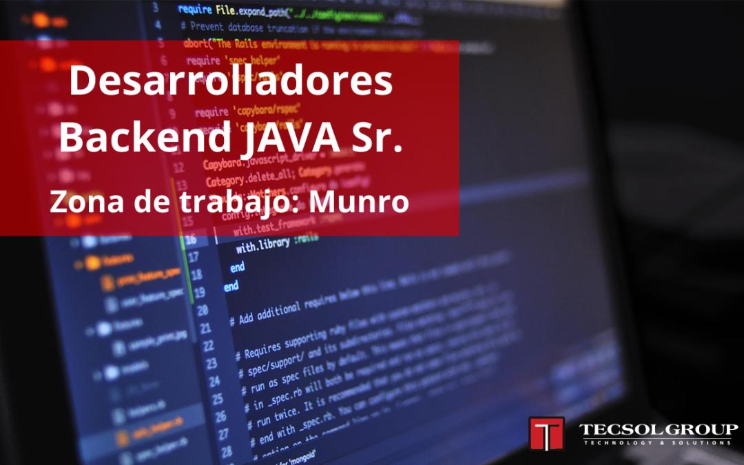 Desarrolladores Backend Java SR
