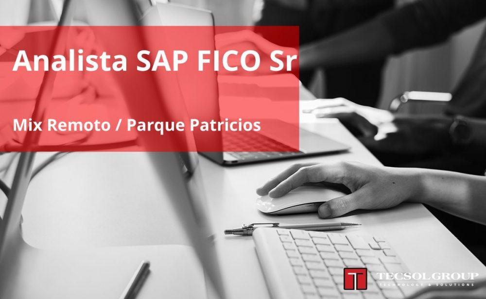 Analista SAP FICO Sr
