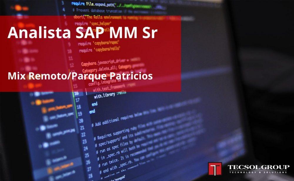 Analista SAP MM Sr