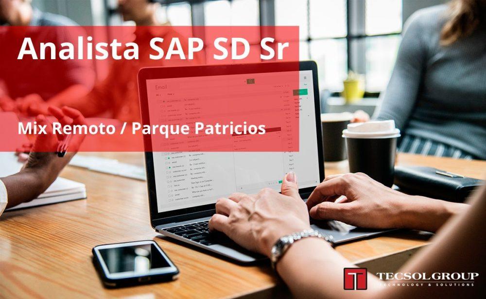Analista SAP SD Sr